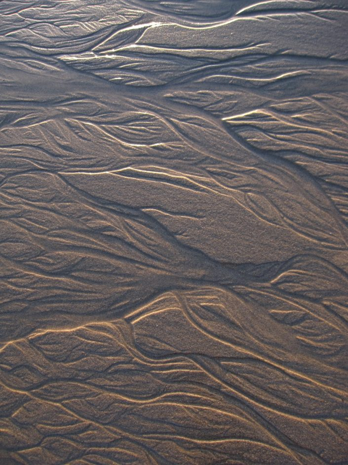 Patterns in Beach Sand