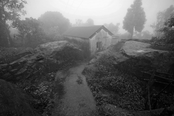 Foggy Path, NE India