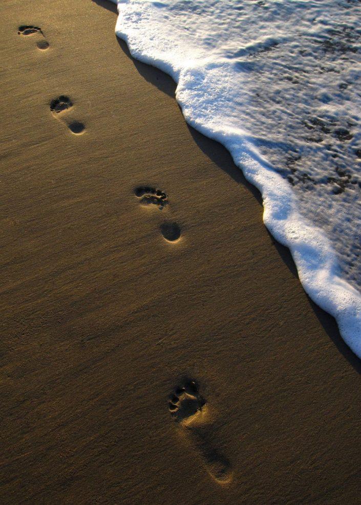 Footprints in Beach Sand