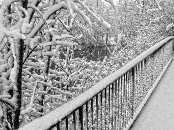 Fresh Snow
