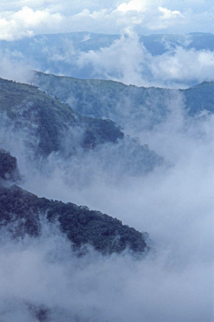 Abode of Clouds, NE India