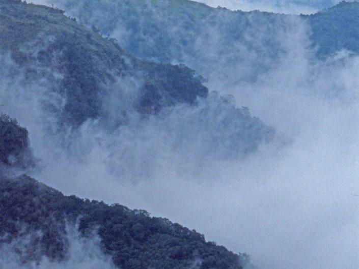 Abode of Clouds, NE India