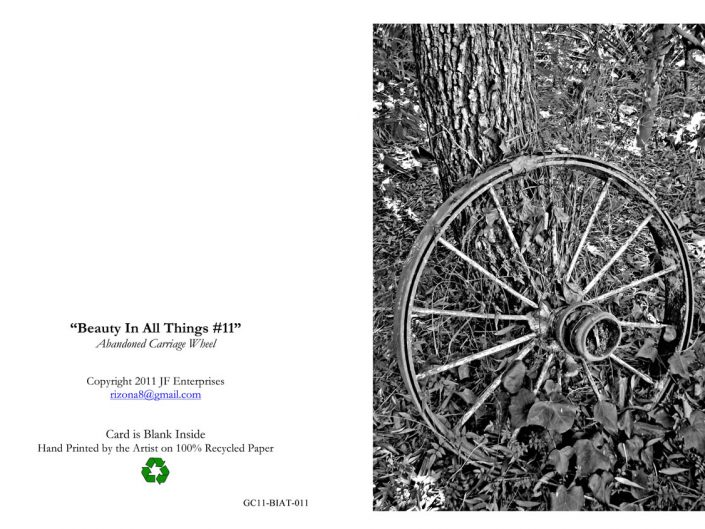 Abandoned Carriage Wheel