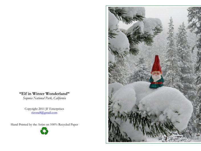 Elf in Snow
