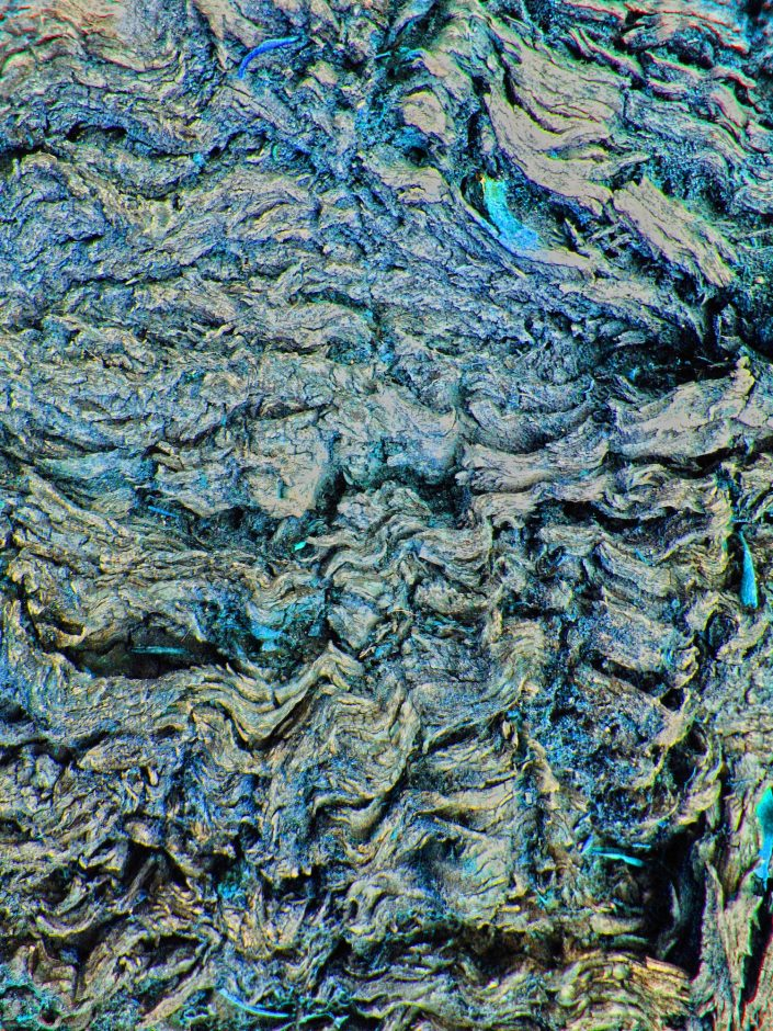 Tree Bark (False Color)3
