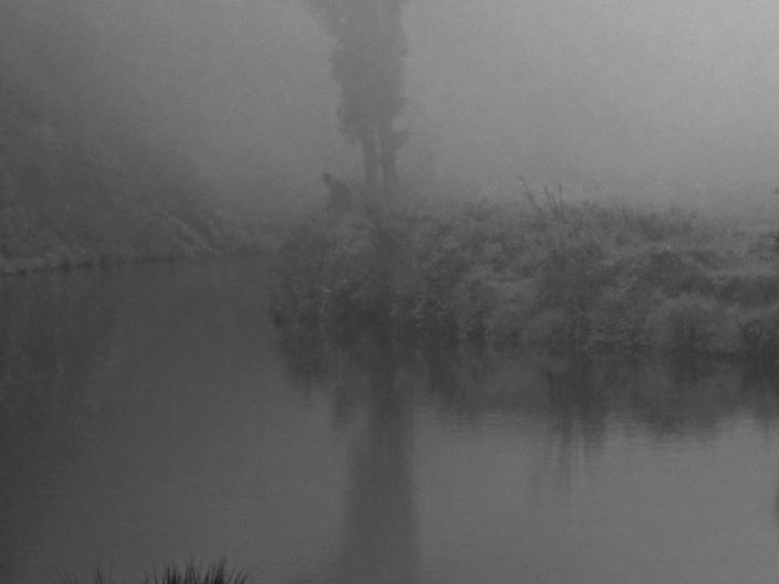 Foggy Quiet