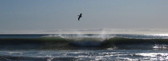 Breaking Wave 1