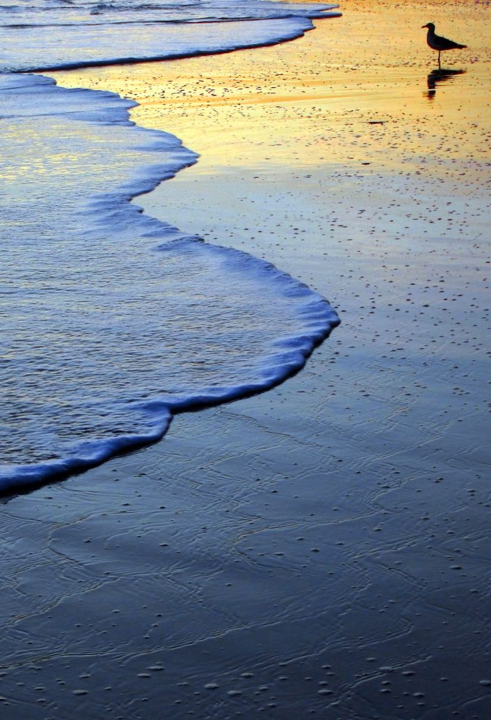 Wave Edge 2