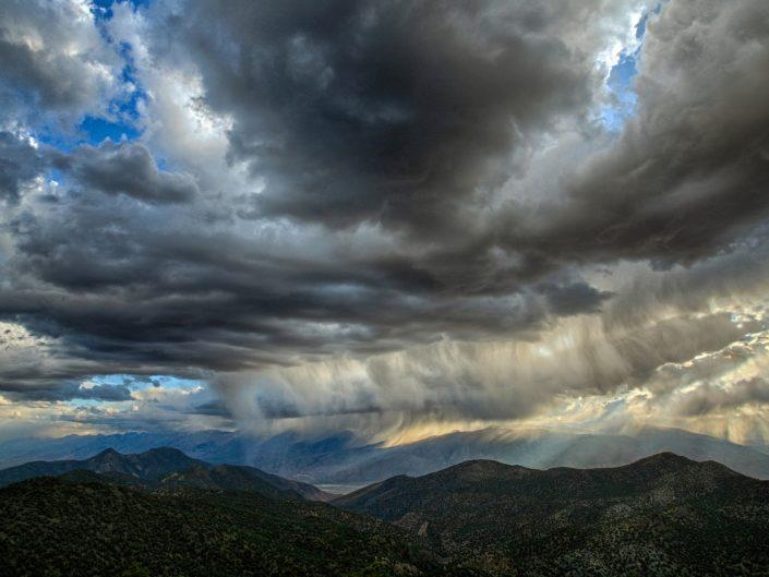 Sierra Rains