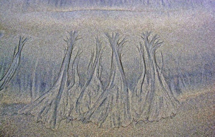 Patterns in Sand 4