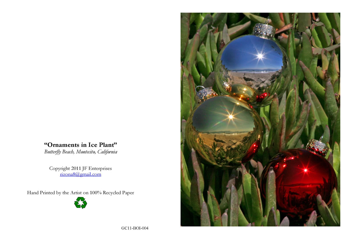 Gmail themes holiday - Orbs In Ice Plant004