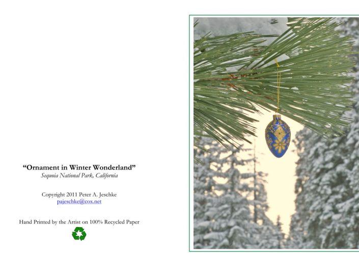 Ornament in Winter Wonderland
