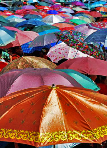 Umbrella Field